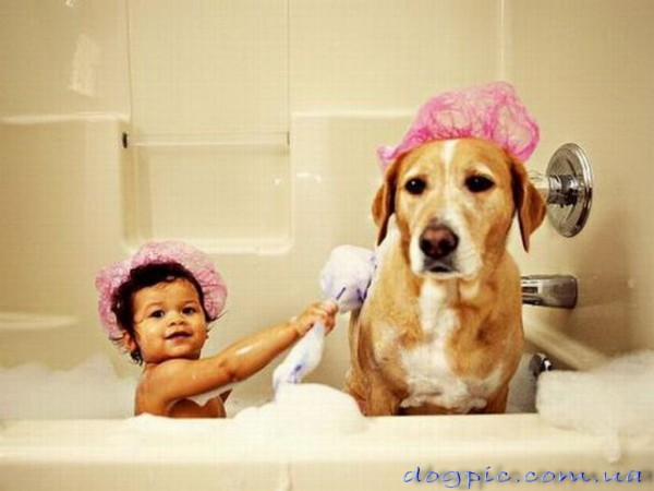 Малыш с собакой в ванной