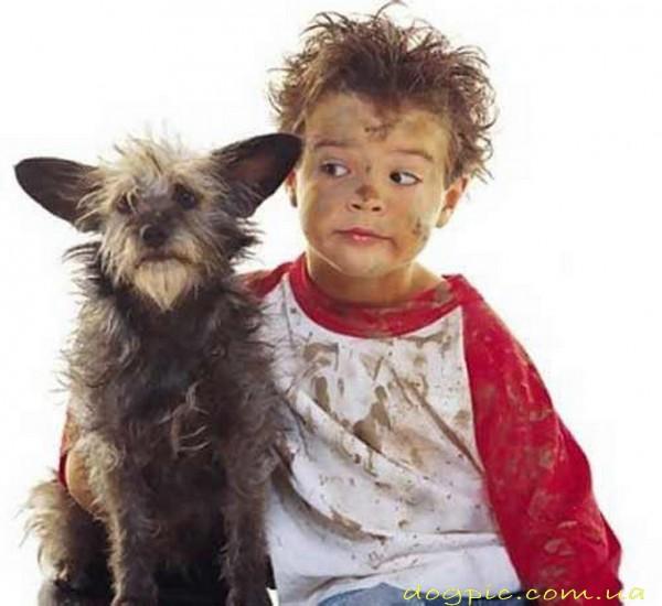 Собака с грязным ребёнком